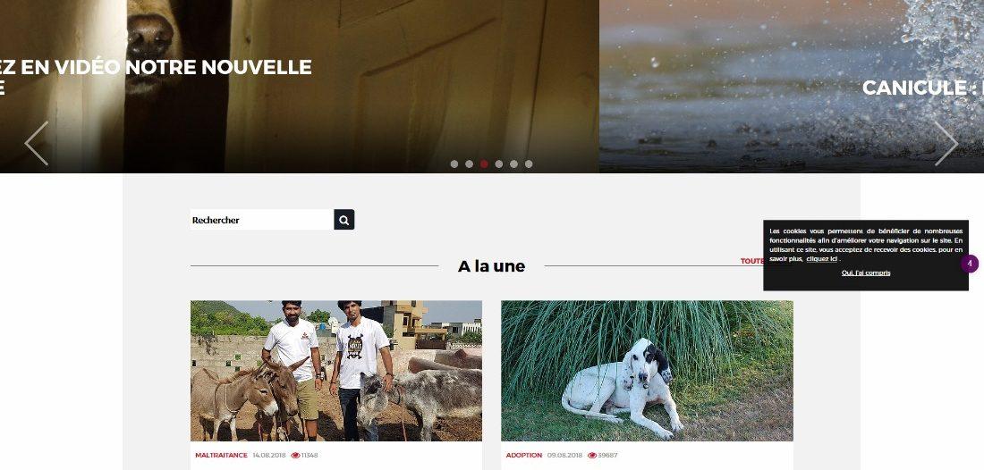30 millions d'amis sur Victor Maia voyant médium spiritualiste Brest Plouvien Finistère Bretagne