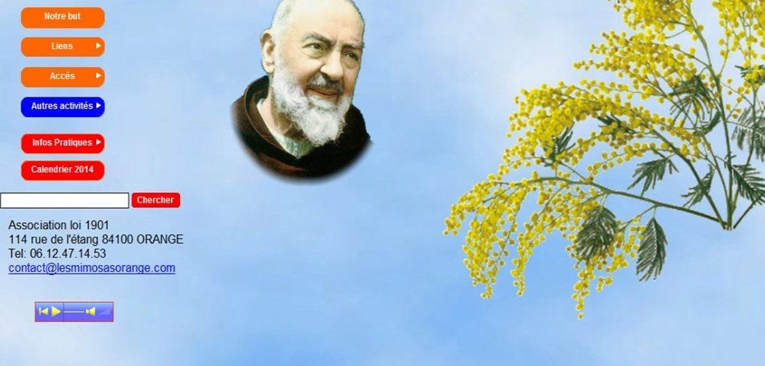 Les mimosas sur Victor Maia médium voyant spiritualiste Brest Finistère Bretagne